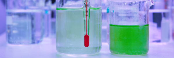 green algea in beaker at laboratory and thermometer